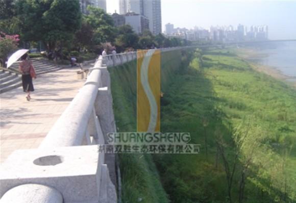 混凝土河堤设计图